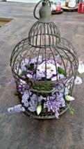 PicsArt_06-30-03.24.56